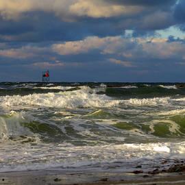 Dianne Cowen - Untamed Sea