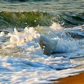 Dianne Cowen - Unwinding by the Sea