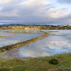 Eddie Yerkish - Upper Newport Bay Nature Preserve Panorama