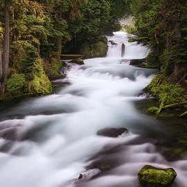 Marnie Patchett - Upstream