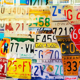 Lutz Baar - U S Car Plates