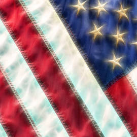 Don Johnson - US Flag
