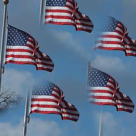 Linda Phelps - US Flag Repeats