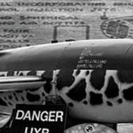V-1 Flying Bomb - Adrian Evans