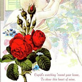 Janette Boyd - Valentine and Roses