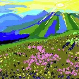 Anand Swaroop Manchiraju - Valley Of Flowers