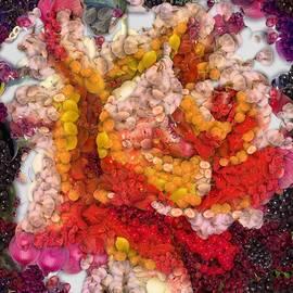 Catherine Lott - Vegged Out Rose