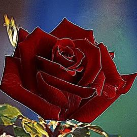 Alexey Bazhan - Velvet Rose