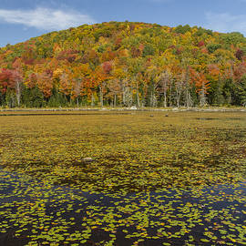 Andy Gimino - Vermont-Pond-Autumn-Colors-Mountain