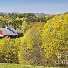 Alan L Graham - Vermont Spring Landscape