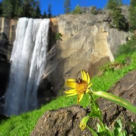 Connor Beekman - Vernal Falls