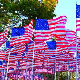 Ed Weidman - Veterans Day Flags #2
