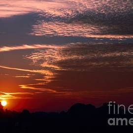 Erica Hanel - Vibrant Sunset