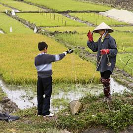 Sally Weigand - Vietnam Rice Paddie Workers