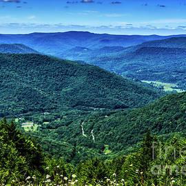Thomas R Fletcher - View from Snowshoe Mountain