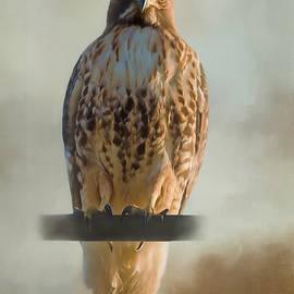 Jordan Blackstone - View Life - Hawk Art