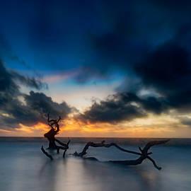 Chris Bordeleau - Viking Dawn