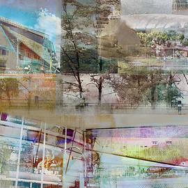 Susan Stone - Vikings Stadium Collage 2