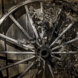 Randall Nyhof - Vine Overgrown Wagon Wheel