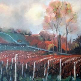 Kim PARDON - Vineyard