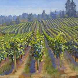Dominique Amendola - Vineyards in California