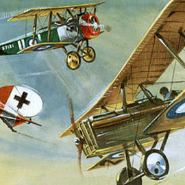 Vintage Aircraft - Wilf Hardy