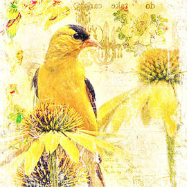 Tina LeCour - Vintage American Goldfinch Print