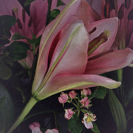 Richard Cummings - Vintage April Lily