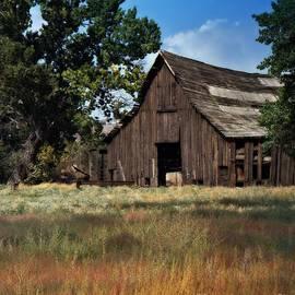 Bobbee Rickard - Vintage Nevada Barn