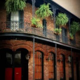 Toni Abdnour - Vintage New Orleans