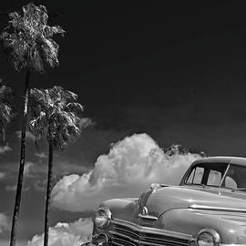 Randall Nyhof - Vintage Plymouth Automobile in Black and White against Palm Trees