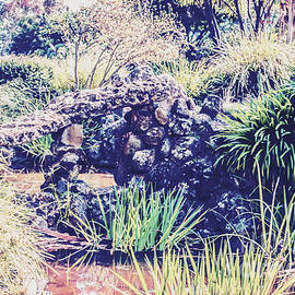 Naomi Burgess - Vintage Pond