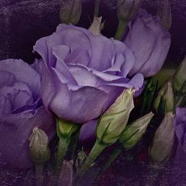 Richard Cummings - Vintage Purple Roses