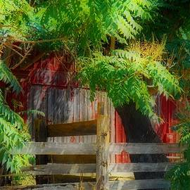 Kathy Franklin - Vintage Red Barn and Trees