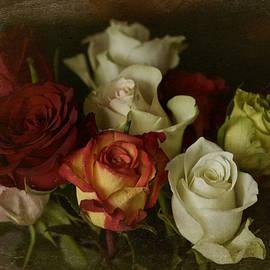 Richard Cummings - Vintage Roses Feb 2017