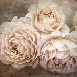 Teresa Pople - Vintage Roses