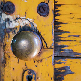Karol Livote - Vintage Train Door