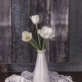 Kim Hojnacki - Vintage White Tulip Still Life