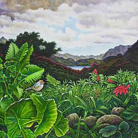 Michael Frank - Visions of Paradise VIII