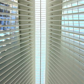 Allen Beatty - W T C Transportation Hub Oculus Interior  # 4
