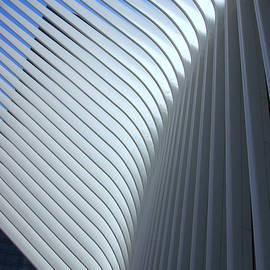 Allen Beatty - W T C Transportation Hub Oculus Exterior  # 14