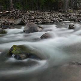 Jeff Swan - Wading the rapids