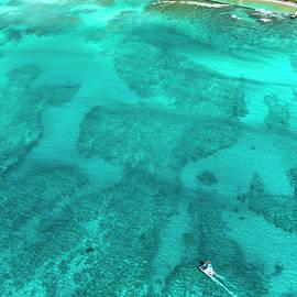 Waikiki Catamaran - Sean Davey