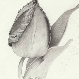 Wraymona Low - Waiting To Bloom