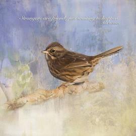 Jordan Blackstone - Waiting To Happen - Bird Art