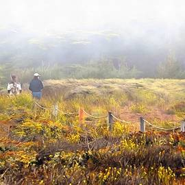 Barbara Snyder - Walk With A Friend On A Foggy Day In Cambria Painting