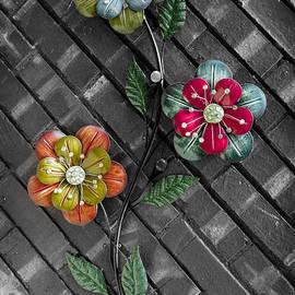 Debra Martz - Wall Flowers - On Gray