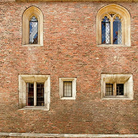 Elena Perelman - Wall of five windows.