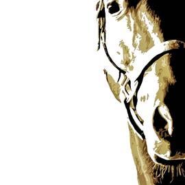Boughton Walden - War Horse