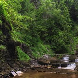 Mark Papke - Warsaw Falls
